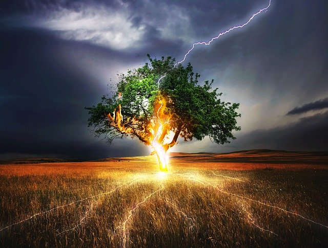 A tree in the middle of a field being struck by lightening, symbolizing great risk.